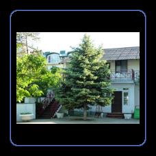 База отдыха «ДИНАМО-2»